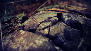 Stone Macro Photography Wallpaper HD