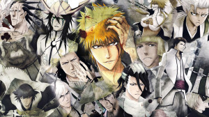 Bleach Captain Wallpapers HD